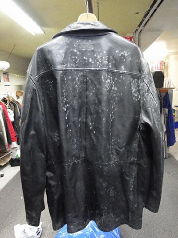 Leather Jacket Mildew Treatment Leather Repair Care